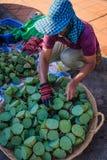 Sprzedawania Lotus ziarna głowy Zdjęcie Stock