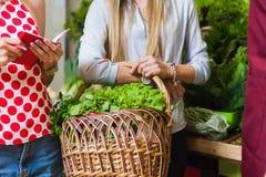 Sprzedawca i dwa dziewczyny z koszem warzywa Obrazy Stock