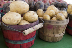 Spuds. Buckets of potatoes at the farmers market Stock Photography