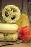Spugna del loofah e del sapone fotografie stock