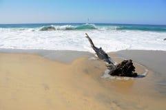 Spuma che tagliato sulla spiaggia Immagine Stock Libera da Diritti