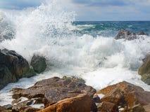 Spuma del mare Immagine Stock