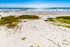 Spuma e sabbia su una spiaggia dell'oceano in Galveston Fotografia Stock Libera da Diritti