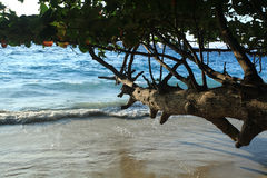Spuma su una spiaggia sabbiosa Immagini Stock Libere da Diritti