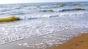 Spuma sul Mare del Nord nei Paesi Bassi stock footage
