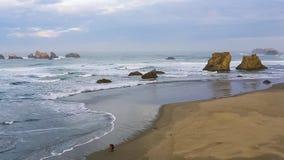 Spuma sulla costa del Pacifico