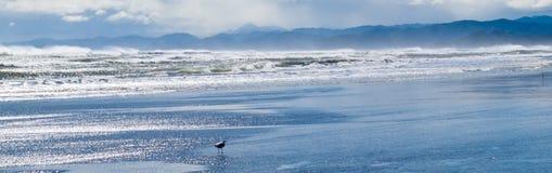 Spuma tempestosa dell'oceano che martella irosamente spiaggia Fotografia Stock Libera da Diritti
