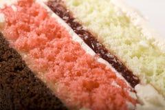 spumoni κέικ Στοκ Φωτογραφίες