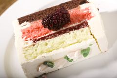 Spumoni Cake and Blackberries Stock Images