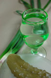Spuntino per vodka Immagine Stock