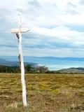 Spur in argentinischen Anden Stockfoto