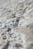 Spur auf schmutzigem Schnee Lizenzfreies Stockbild