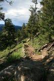 Spur in den Bergen von felsigem stockfoto