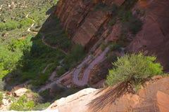Spur in den roten Bergen stockbild