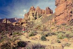 Spur der jungen Frau, die in Berge am Sommertag läuft Stockbilder