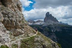 Spur, die in die Alpen läuft Stockbilder