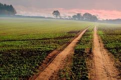 Spur durch Ackerland stockbilder