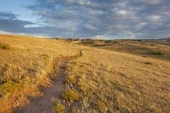 Spur durch Colorado-Grasland Lizenzfreies Stockbild
