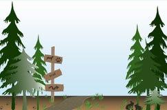 Spur durch den Wald Stockbild