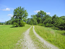 Spur durch Landschaft Lizenzfreies Stockfoto