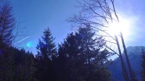Spur einer Fläche im Himmel, mitten in den grünen Bäumen der Berge stock footage