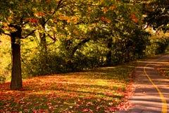 Spur im Herbst Stockfotos