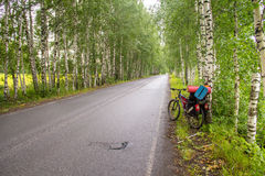 Spur im Holz mit dem Reisen des Fahrrades Stockfotos