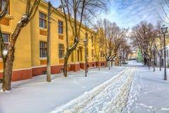 Spur im Schnee Lizenzfreies Stockfoto