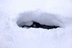 Spur innen zum Schnee stockbilder
