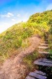 Spur Kew Mae Pan Nature Stockfotografie