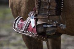 Spur and stirrup closeup in Ecuador Royalty Free Stock Photo