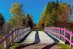 Spur Transportes Kanada Lizenzfreies Stockbild