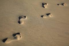 Spur von Abdrücken im Meersand - kopieren Sie Platz Lizenzfreie Stockfotos