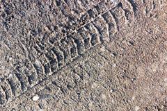 Spur von Autos auf dem Schmutz auf der Natur Lizenzfreie Stockbilder