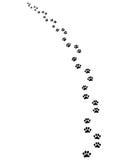 Spur von Hund 4 Stockfotos