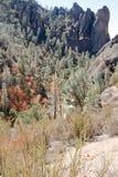 Spur zu den Berggipfelfelsspitzenfelsen Stockfoto
