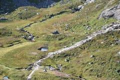 Spur zu Kjeragbolten, Kjerag-Berg Rogoland, Norwegen Stockfotografie