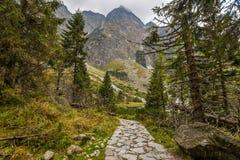Spur zum Berg Stockfoto
