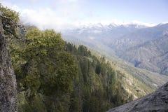 Spur zum Moro-Felsen im Mammutbaum-Nationalpark Stockfotos
