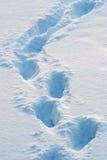 Spuren auf dem Schnee Lizenzfreie Stockbilder
