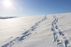 Spuren auf Schnee stockbild