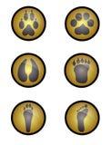 Spuren der Tiere Stockbilder
