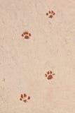 Spuren der Tiere gemalt. Lizenzfreie Stockbilder