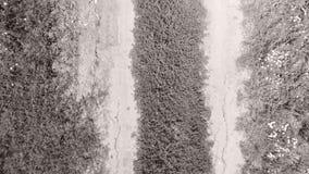 Spuren des Autos auf dem Gebiet, Vogelperspektive stock footage