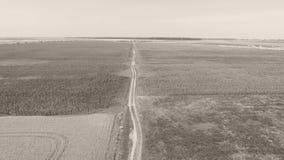Spuren des Autos auf dem Gebiet, Vogelperspektive stock video footage