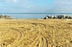 Spuren des Herbstes auf dem Strand Lizenzfreie Stockbilder