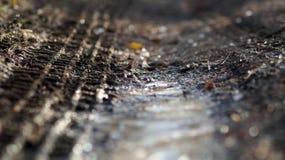 Spuren des Reifens auf dem schlammigen Weg Lizenzfreie Stockfotografie