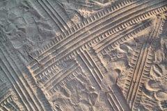 Spuren im Sand Teil Drucke und Bahnen des Reifens, Fu?, F??e, Sonnenseepantoffel im Strandsand lizenzfreie stockfotos