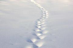 Spuren im Schnee Lizenzfreie Stockfotos