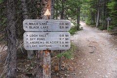Spuren in Rocky Mountains Lizenzfreies Stockbild